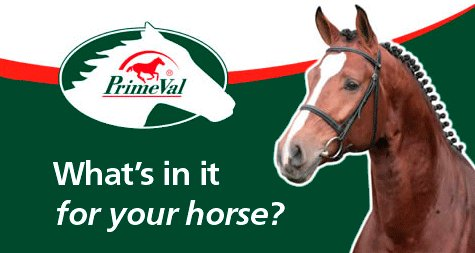 Whats in it for your Horse
